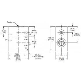 Dual 3-ports manifold