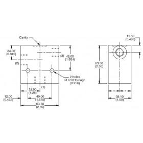 Dual 2-ports manifold